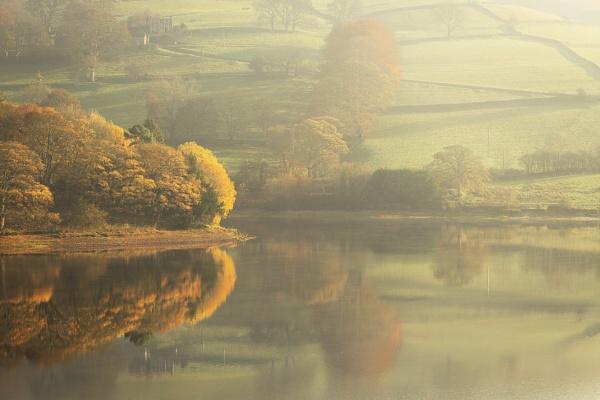 Misty Morning by Trevhas