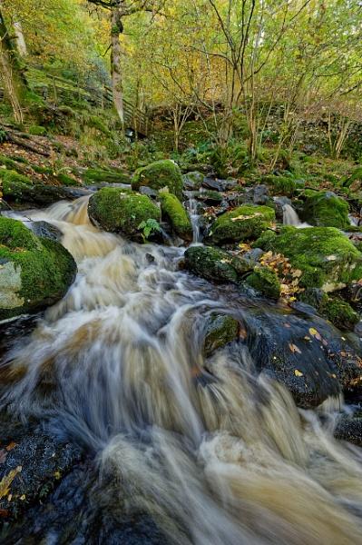 Slippy Stone Stream by Alffoto