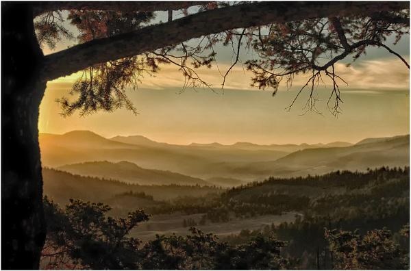 Misty Landscape by dven