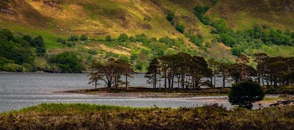 Loch Maree by dven