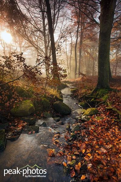 Peak Mist by richardwheel