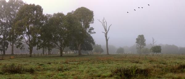 Farm Land by Peco