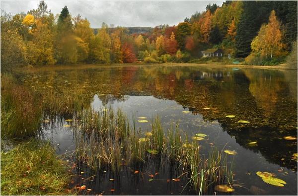 Polney Loch by MalcolmM