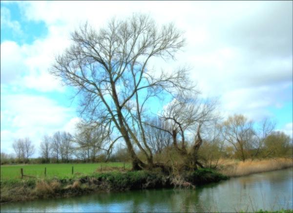 The river Thames. by niknakpaddywhack