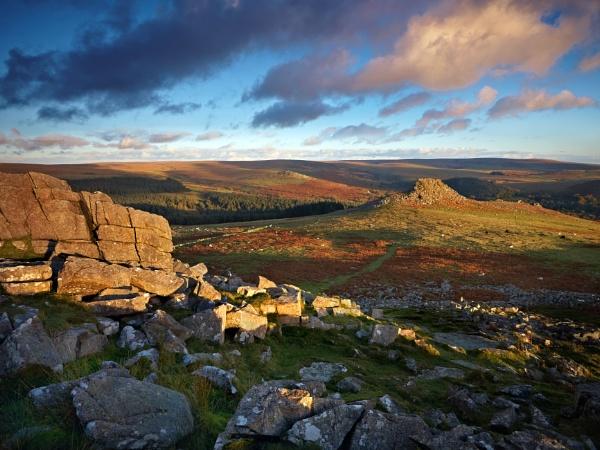 Dartmoor gold by oldbloke