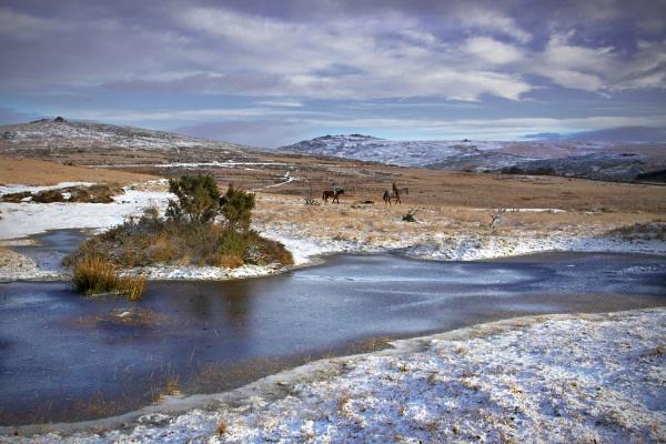 winter ride by oldbloke