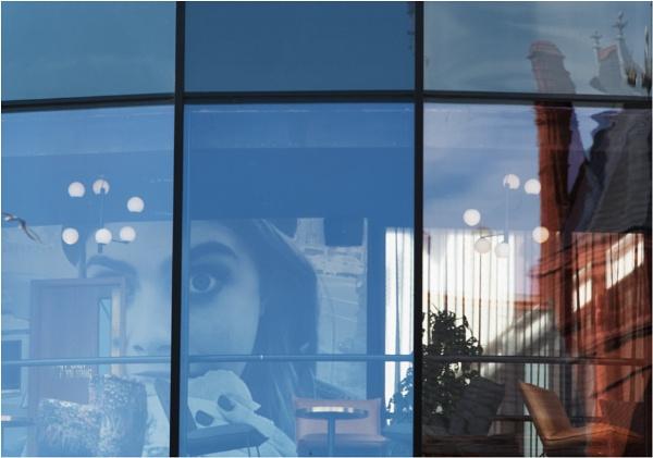 Windows by franken