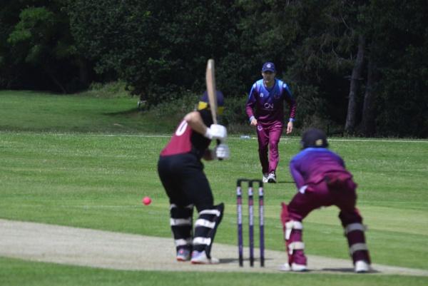 Cricket by peterthowe