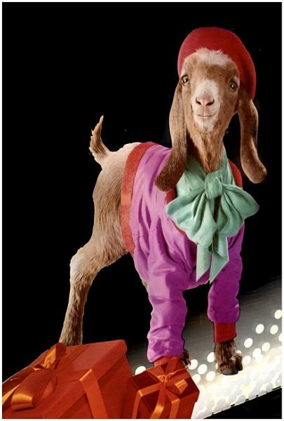 Vincent Van Goat by mac