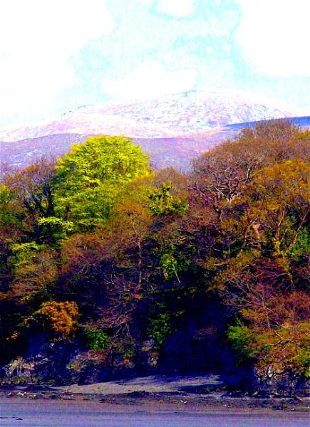 Bangor view by ddolfelin