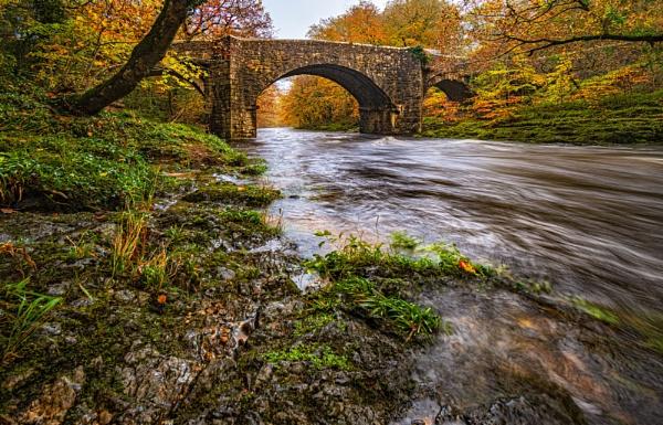 Holne Bridge Left Bank by DTM