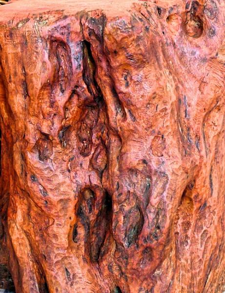 wood shapes by elousteve