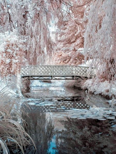 Bridge by Adee