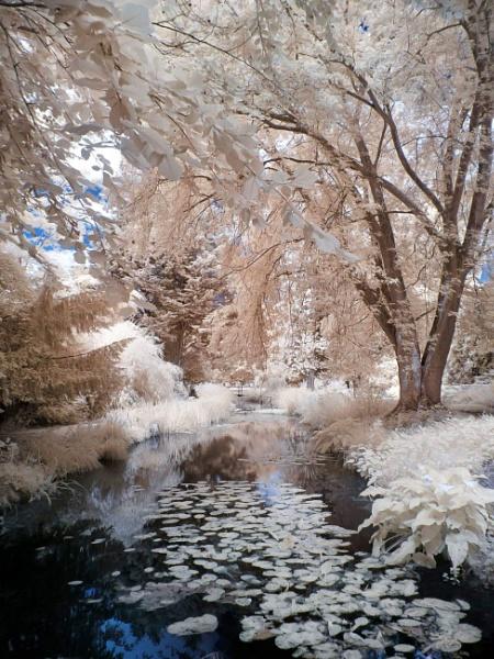 River Walk  by Adee