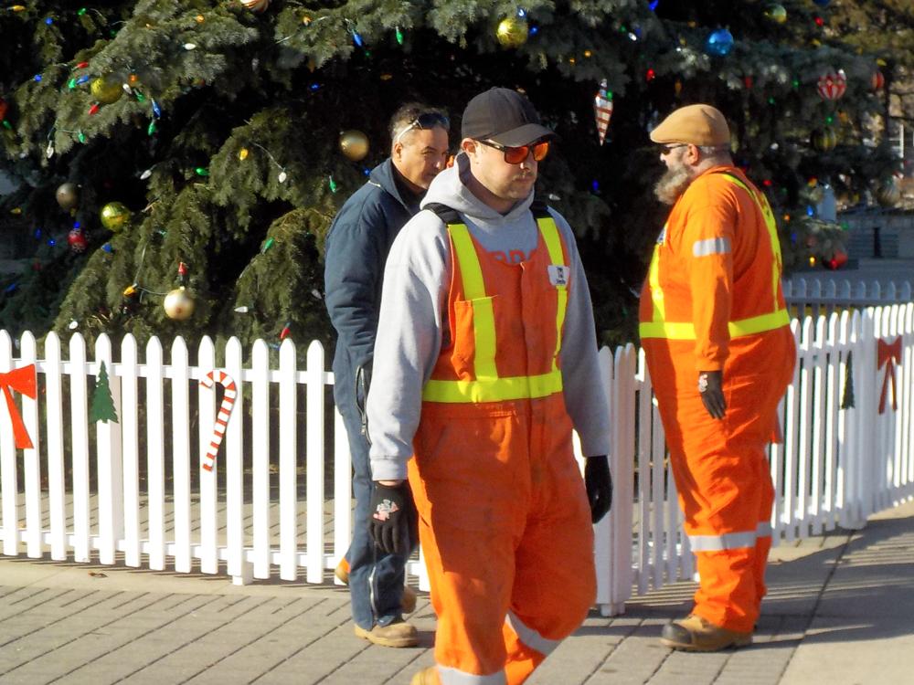 HAMILTON CITY WORKERS near HAMILTON'S CITY HALL CHRISTMAS TREE