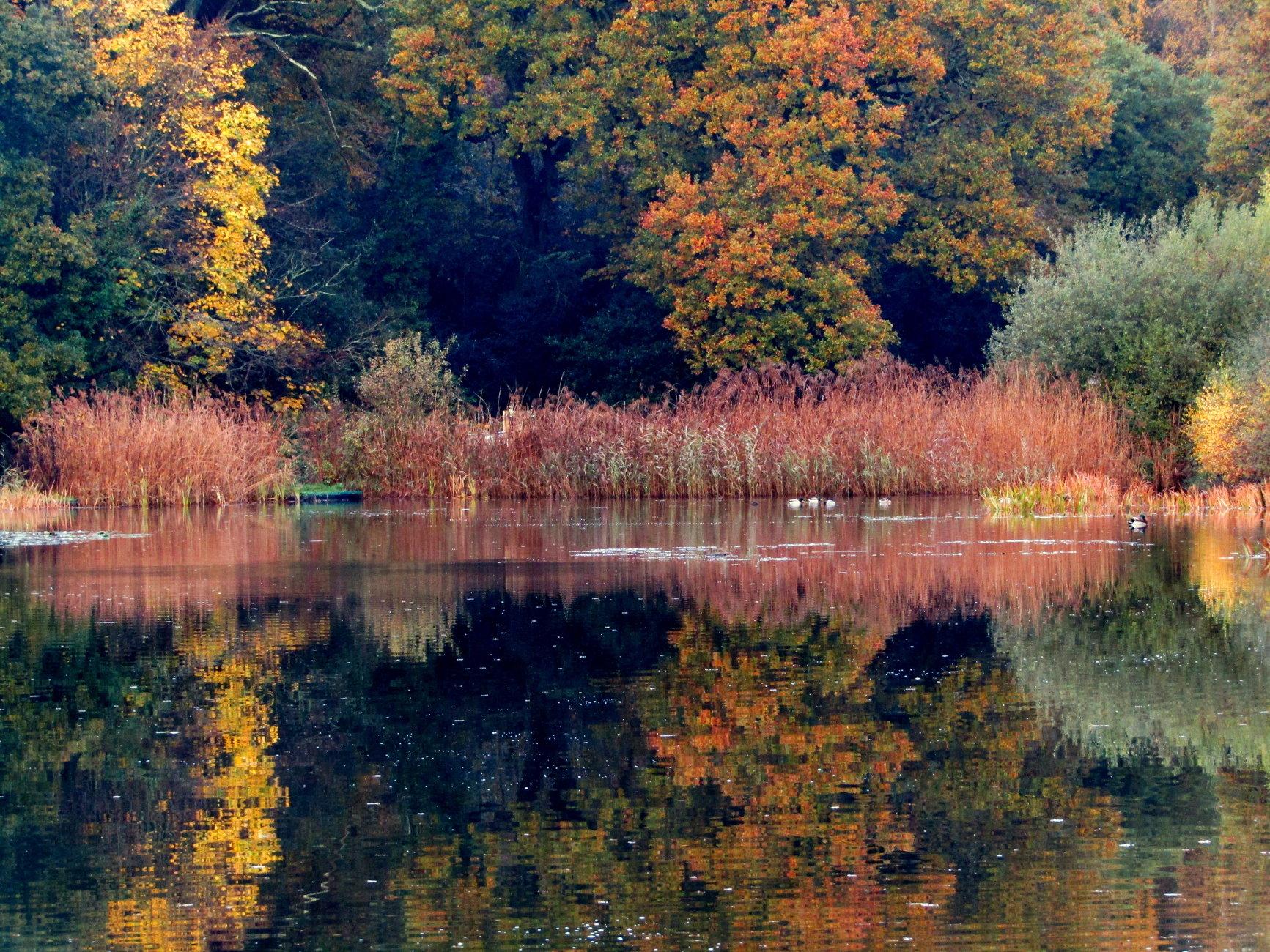 Autumnal paintbox