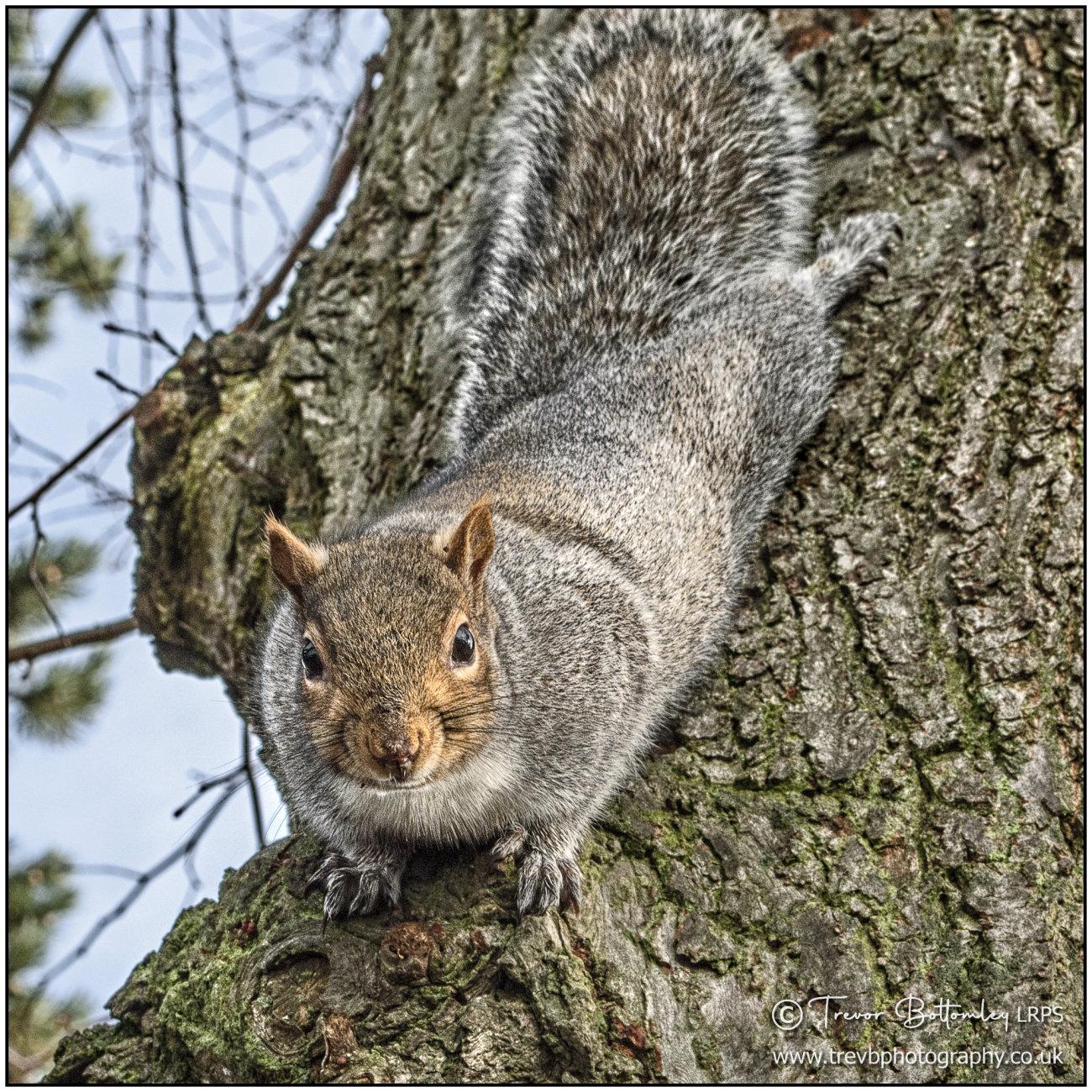 Warning: may contain nuts