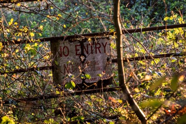 The Gate by rambler