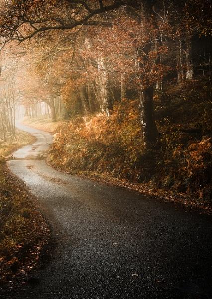 Autumn Road by Mark_Callander