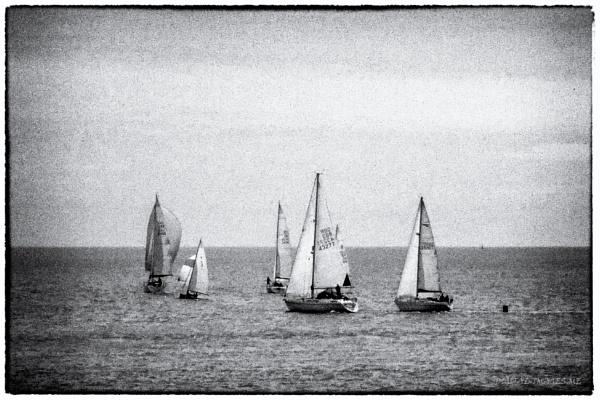 Yachts by Alan_Baseley