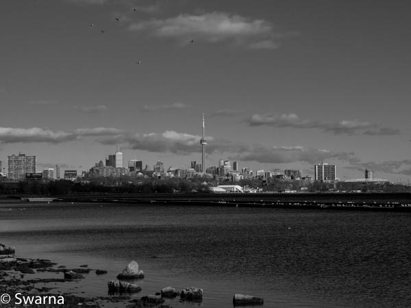 Toronto Skyline... by Swarnadip