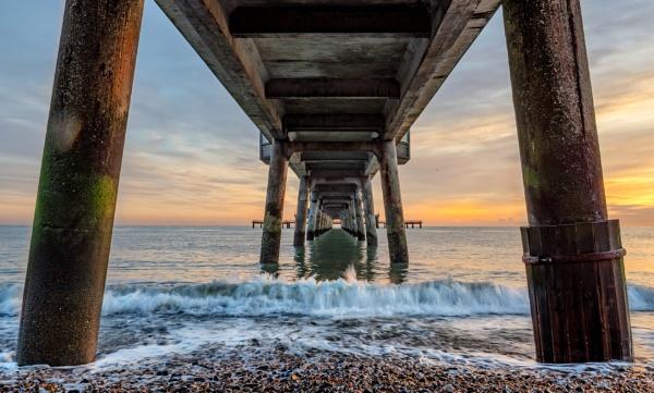 Under Pier by carper123