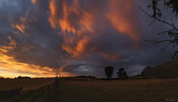 Sky by Fefe