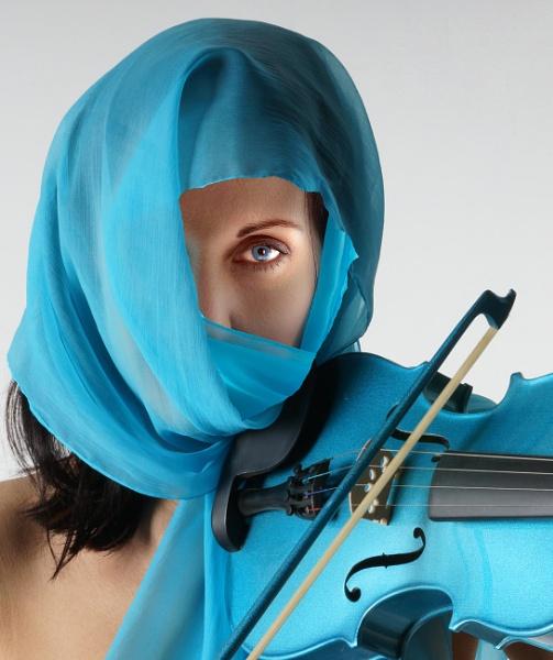 On the Fiddle by Sonyfan