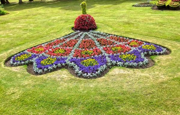Flower Art hdr by silverscot
