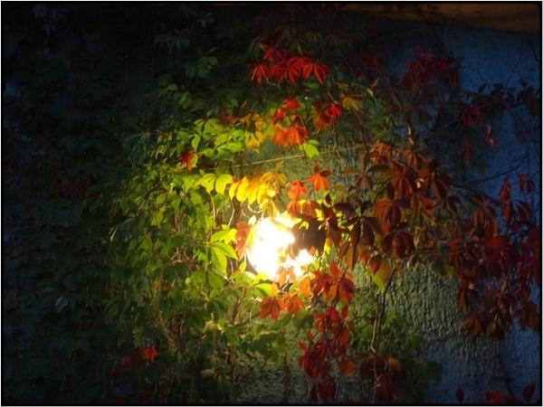 the hidden lamp by FabioKeiner