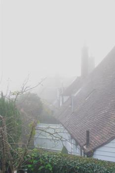 Foggy start to the day !