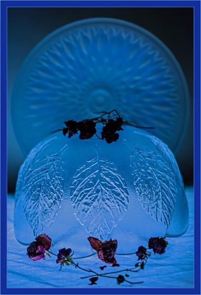 dead rose bowl... by estonian