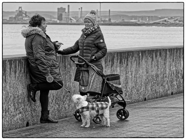 You Said Walkies.... by DaveRyder