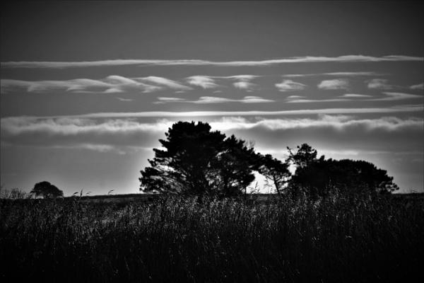 Cloud patterns by Madoldie