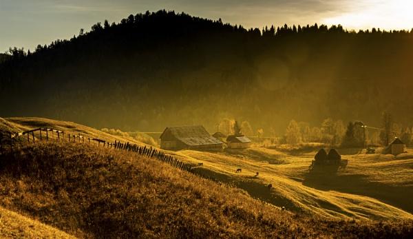 Silent morning by Bogdan255
