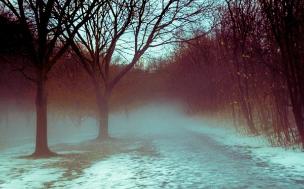 Foggy Bottom by BobbyMS