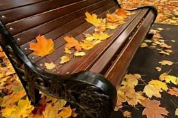 golden autumn is no more *