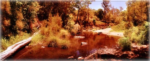 Cedar Creek by Peco