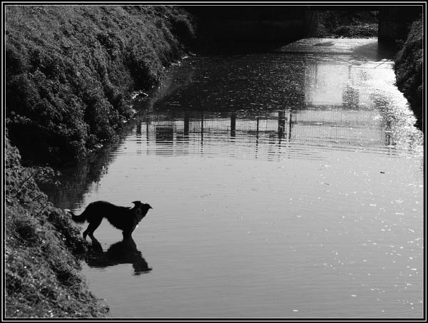4th Nov 2006 Saturday Shadows. by Imageryonly