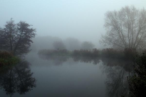 Foggy by GwB