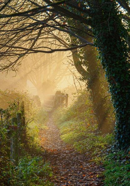 Bridge of light by JohnDyer