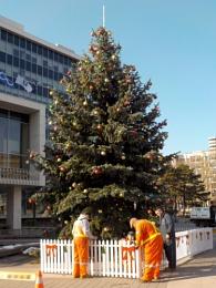 HAMILTON'S CITY HALL CHRISTMAS TREE ...