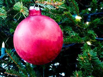 CHRISTMAS BALL ON THE LOCKE BRANCH LIBRARY – CHRISTMAS TREE