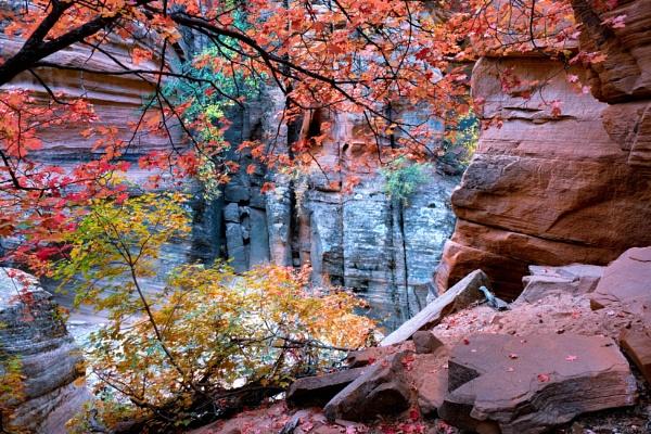 Walls of autumn by mlseawell