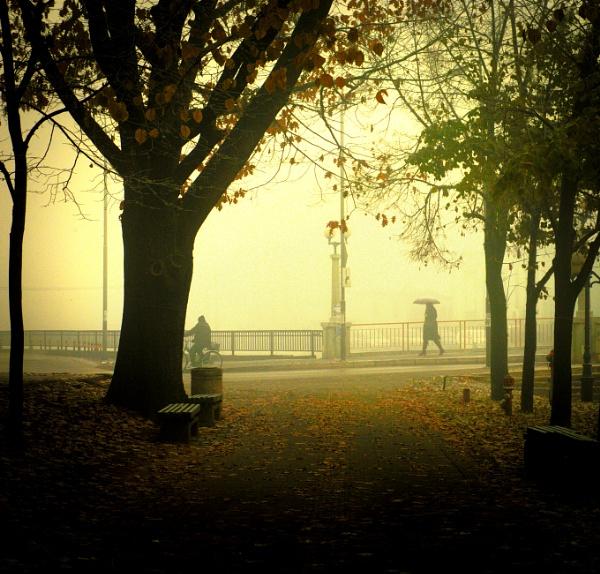 November - IV by MileJanjic