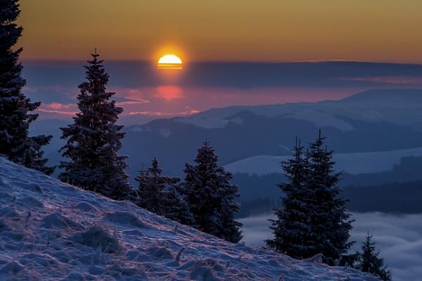 1 December by Bogdan255