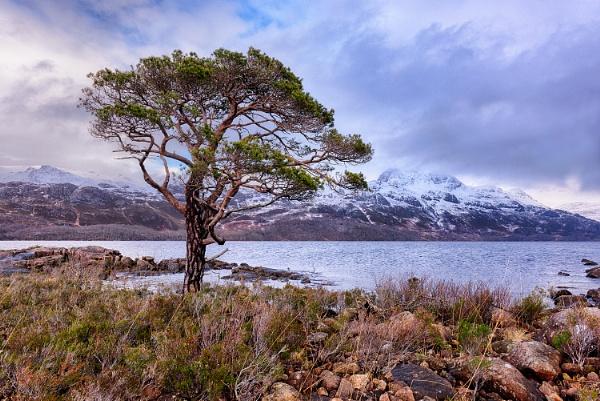 Loch Maree by Alffoto