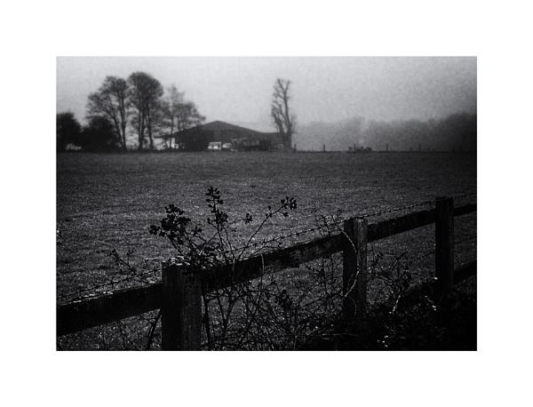 Elms Farm by AlfieK
