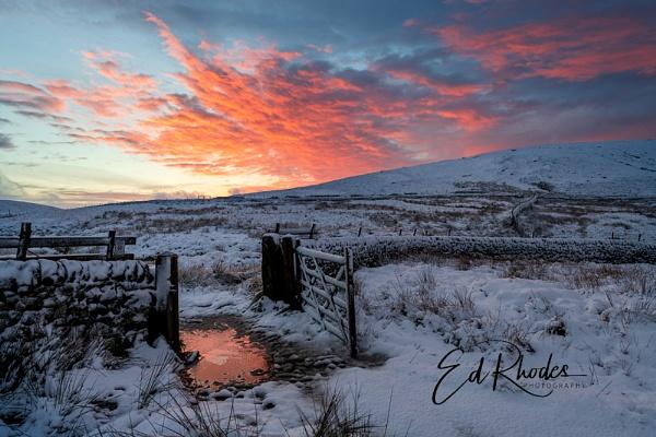 Winter Sunrise by edrhodes