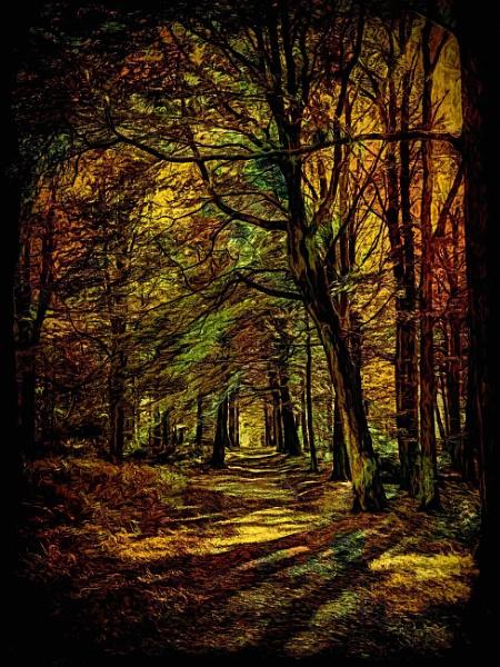 Trees by adagio